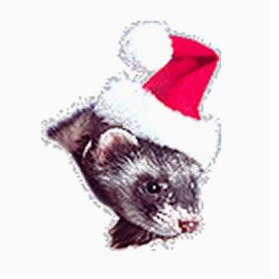 Marshall - Gorro de Papa Noel para hurones