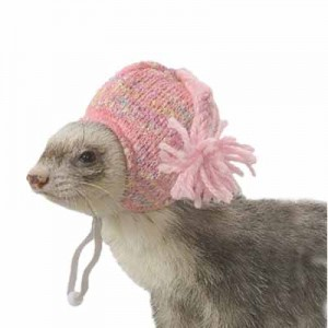 Marshall - Gorro Pink Cap para hurones